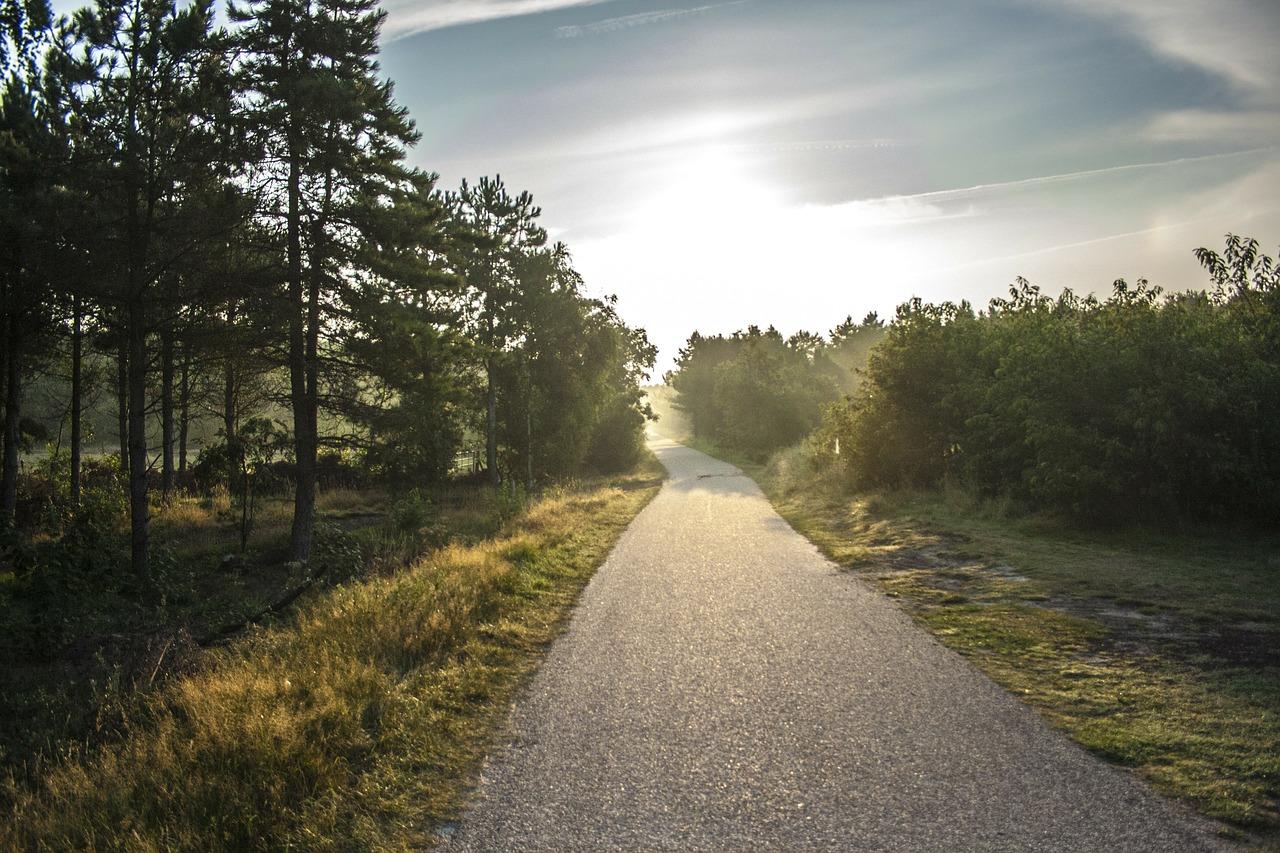bike-path-189174_1280